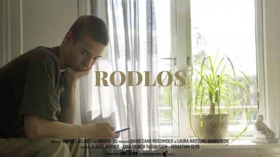 Rodløs - Albert med titel